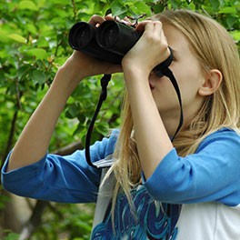 How to Buy Your Very Own Birding Binoculars