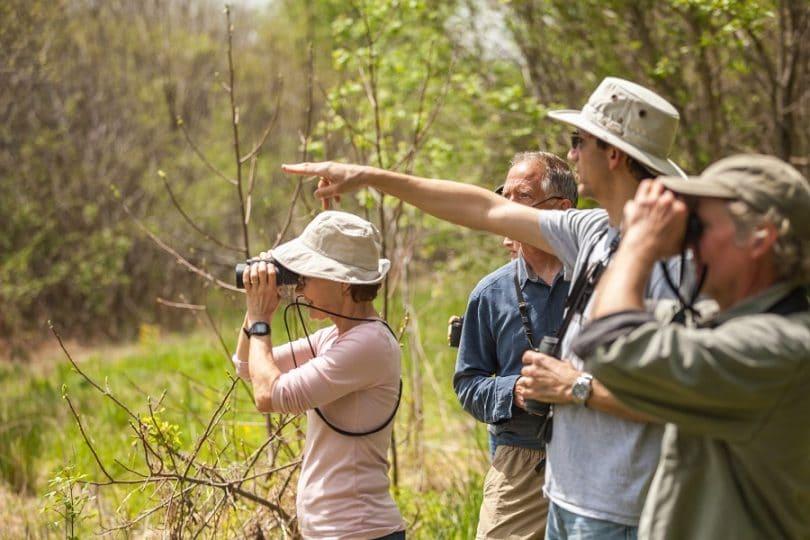 best birding binoculars uae